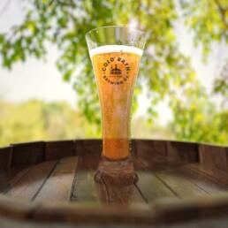craft beer glass 3d render