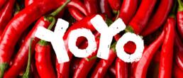 yoyo laos sauce feature image