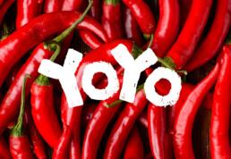 yoyo laos sauce featured image